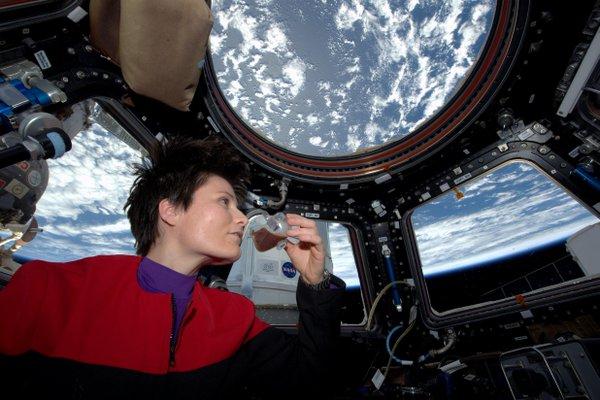 Copernicus Goes Into Orbit